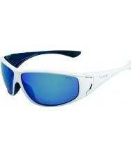 Bolle Highwood brillantes azules polarizados gafas de sol azules marinos blancos