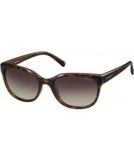 Polaroid gafas de sol de las señoras pld4030-s q3v La Habana oscura polarizadas