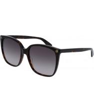 Gucci Señoras gg0022s 003 gafas de sol