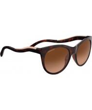 Serengeti 8567 gafas de sol valentina tortuga