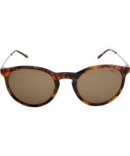 Polo Ralph Lauren Ph4096 50 clásico estilo de concha Jerry 501773 gafas de sol