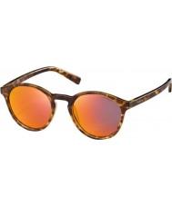 Polaroid Pld6013-s ppt oz rubios Habana gafas de sol polarizadas