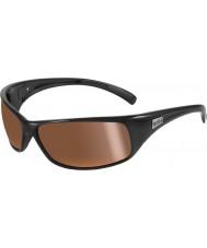 Bolle Retroceder brillantes negros polarizados gafas de sol de oro del interior