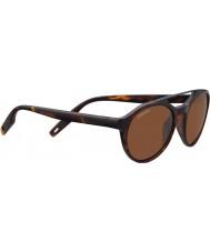 Serengeti 8595 leandro tortoise gafas de sol