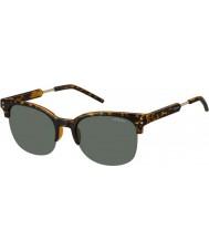 Polaroid pld2031-s para hombre nho rc Habana gafas de sol polarizadas de oro
