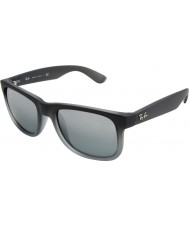 RayBan Rb4165 justin todo gris