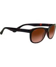 Serengeti 8671 gafas de sol anteo toroiseshell
