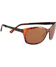 Serengeti Sara brillante de carey oscuro polarizado gafas de sol de los conductores phd