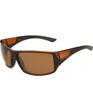 Bolle Notechis gafas de sol polarizadas de armas de piedra arenisca de color marrón brillante negro mate