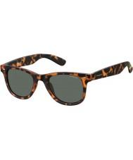 Polaroid Pld6009-ns SOG rc Habana naranja gafas de sol polarizadas