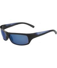 Bolle Feroces negro brillante azul polarizado gafas de sol azules marinos
