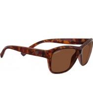 Serengeti 7947 gafas de sol de carey gabriella